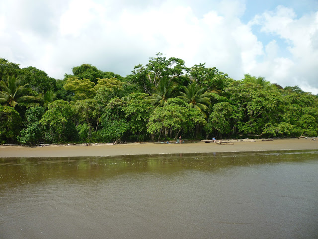 Photo of Playa Ballena, or Ballena Beach, in Costa Rica