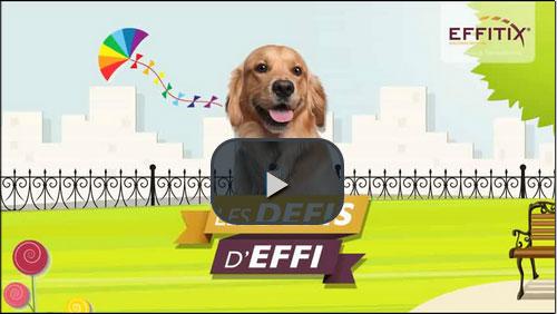Vidéo d'information sur les parasites du chien