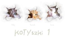 Pierwsze kotyszki - 2008-2012