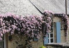 ♥ Normandie (Calvados)