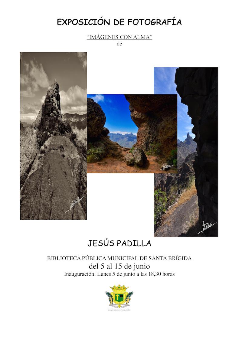 BIBLIOTECA PÚBLICA MUNICIPAL DE SANTA BRIGIDA   del 5 al 15 de Junio