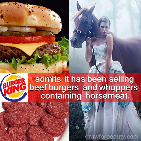 Burger King Admits Burgers Contain Horsemeat