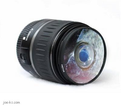 Fisheye Lens Pictures