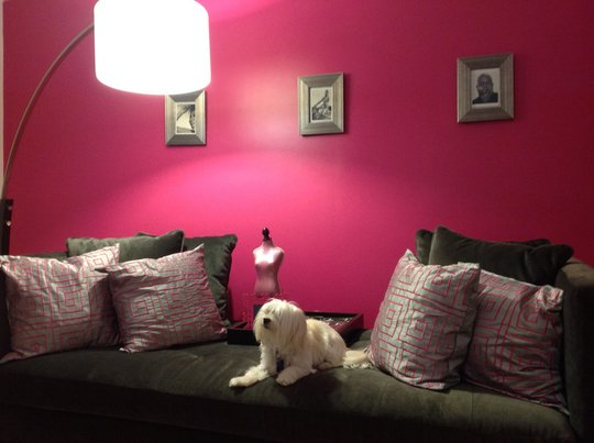 Creative Influences: Room for Color