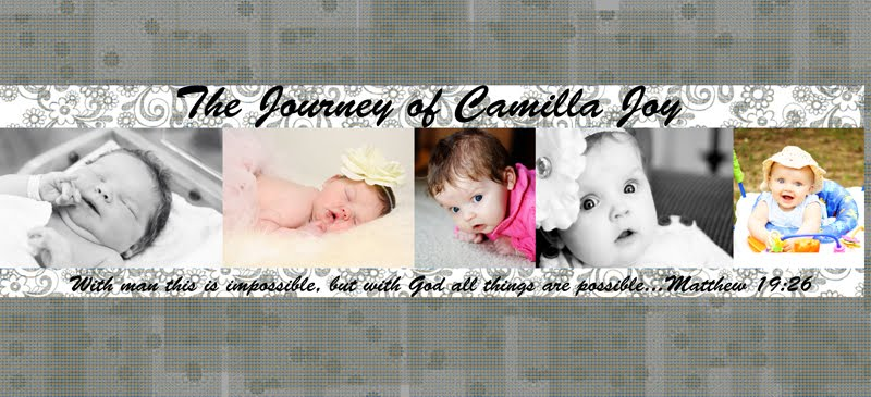 The Journey of Camilla Joy