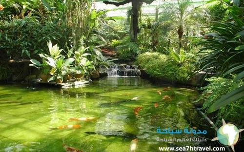 محمية طبيعية فى ماليزيا