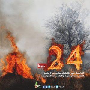 "Jihad Florestal na Califórnia: ""Soltem o Inferno!"""