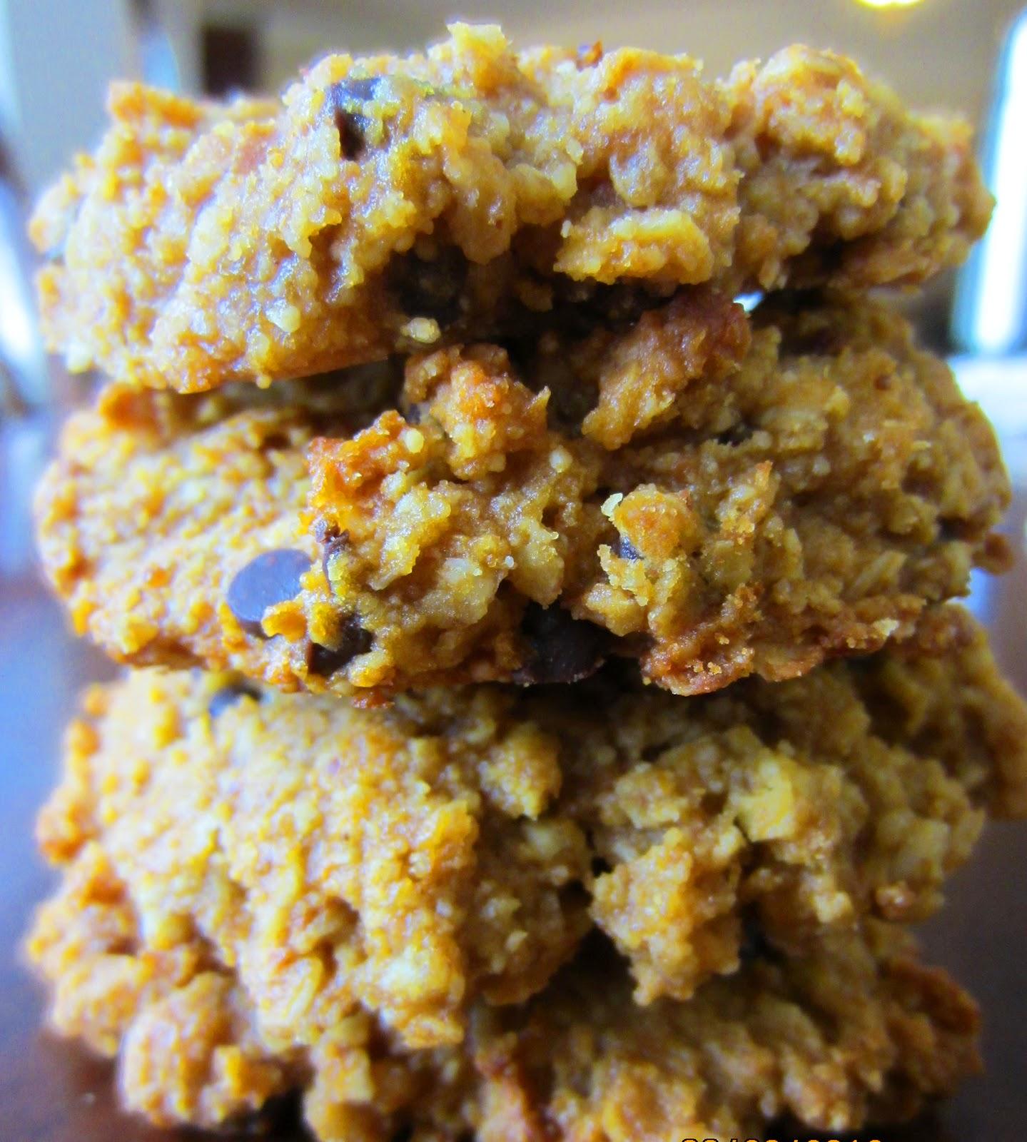 Easy paleo breakfast cookies