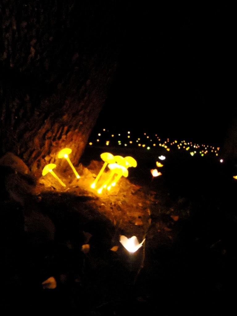 Lampadine Luci Di Natale: Luce 24 store - 40 lucciolone a led ...
