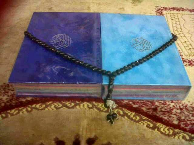 quran rainbow couple, quran rainbow