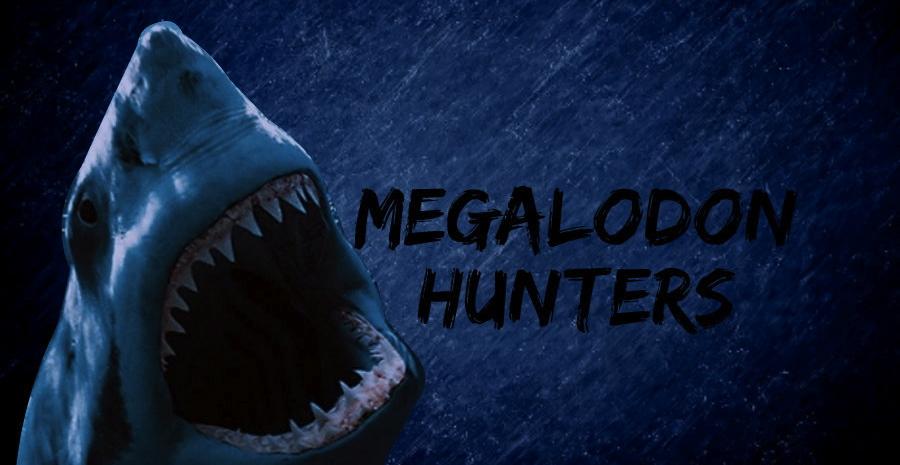 Megalodon Hunters