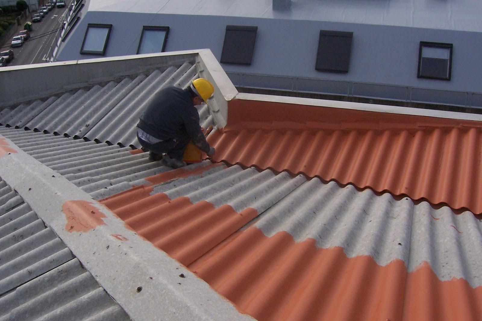 Reformas de cubiertas y tejados reformas en vitoria - Cubiertas vegetales para tejados ...