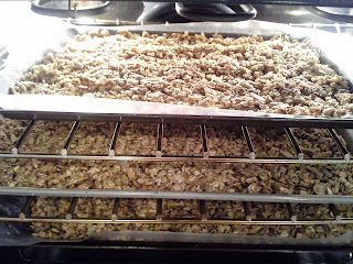 Vanilla Almond Granola with Chia seeds