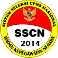 Penerimaan dan Pengumuman Seleksi Calon Pegawai Negeri Sipil (CPNS) DKI Jakarta Tahun 2014 – 2015