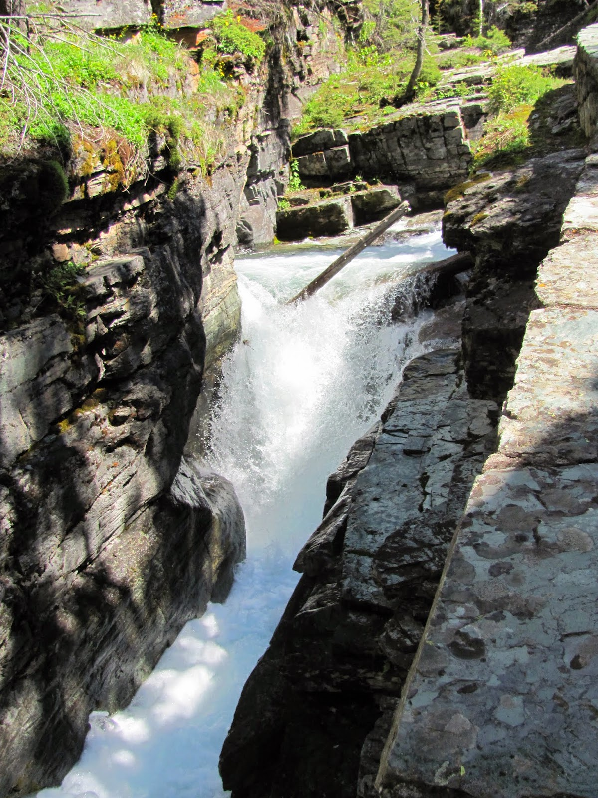 Glacial meltwater erodes a narrow gorge at Glacier National Park in Montana