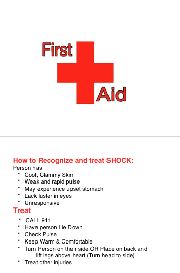 image relating to First Aid Cards Printable named Observe The Chief: Brownie: 1st Guidance Badge
