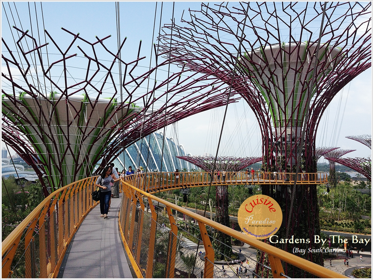 ... A Stroll Along The 128 Metre Long Walkway That Connects The Two 25  Metre Supertrees At The Supertree Grove And Take In A Different View Of The  Gardens.