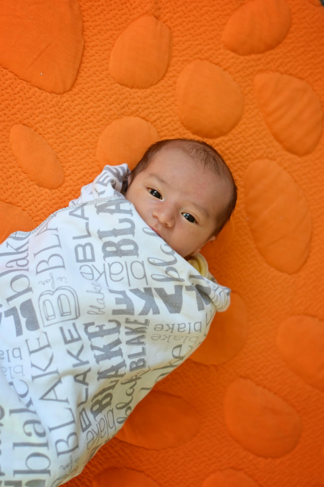 Mommy Testers, Personalized swaddle blanket, custom swaddle blanket, Modern personalized baby blanket, Atkinson Drive Gifts,