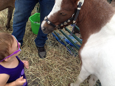 toddler and pony