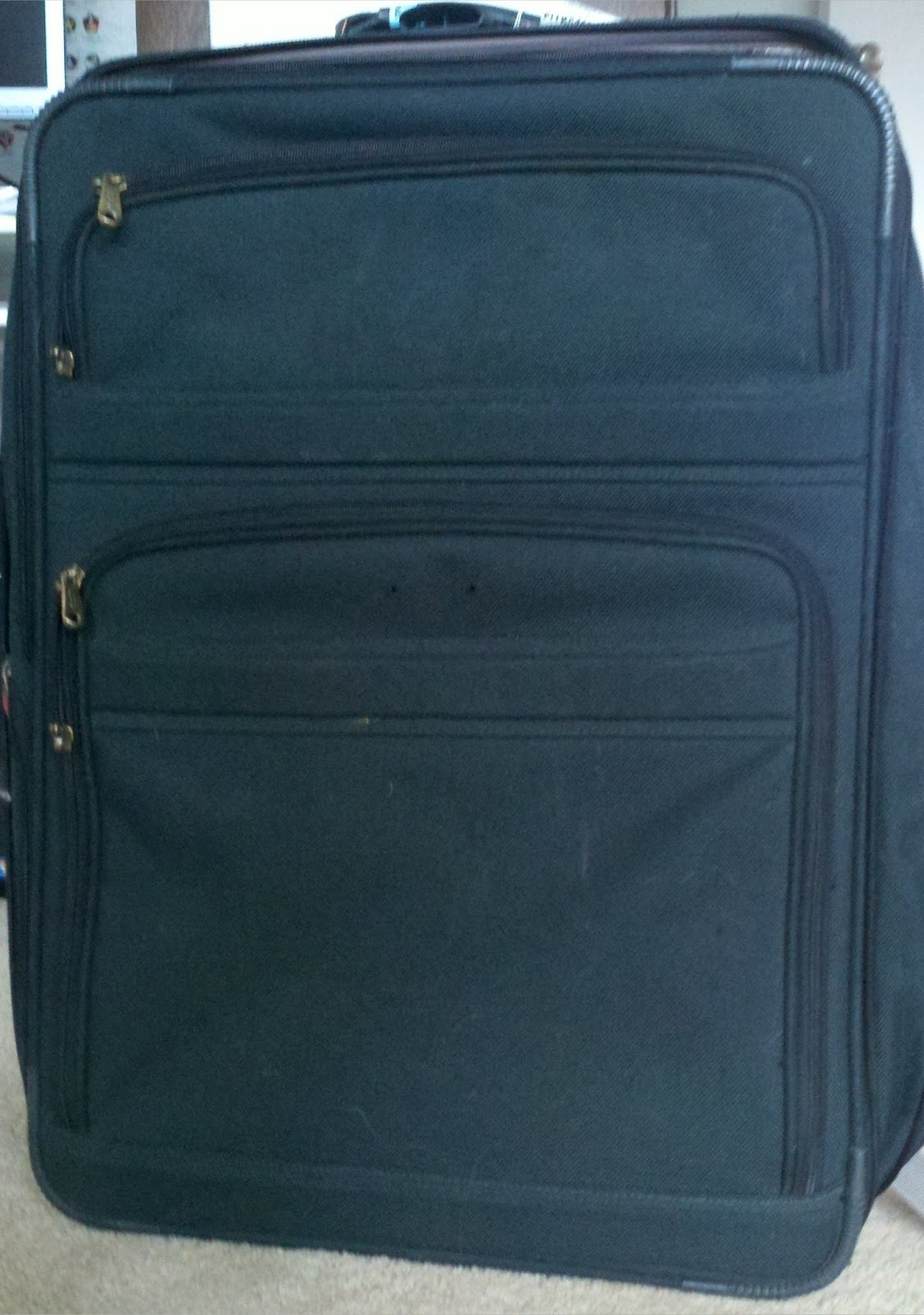 I Can Write Funny Fun With Freecycle Cat Suitcase
