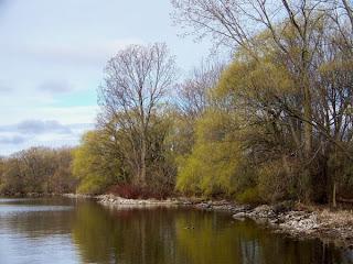 nature,nature picture,beautiful image,Eastern Ontario,canada, canada pics