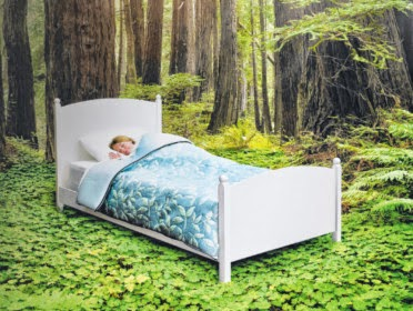 Build A Comfortable Environment For Your Bedroom