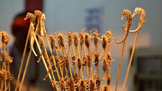 Seahorses and scorpions in Snack Street in Wangfujing in Beijing