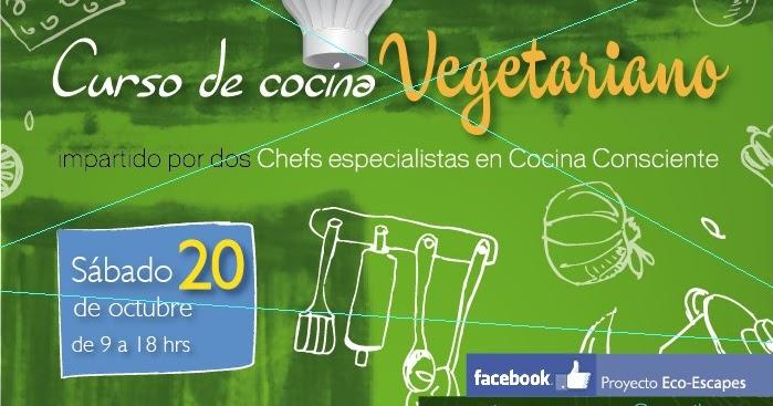 Blog de ome curso cocina vegetariana - Curso de cocina vegetariana ...