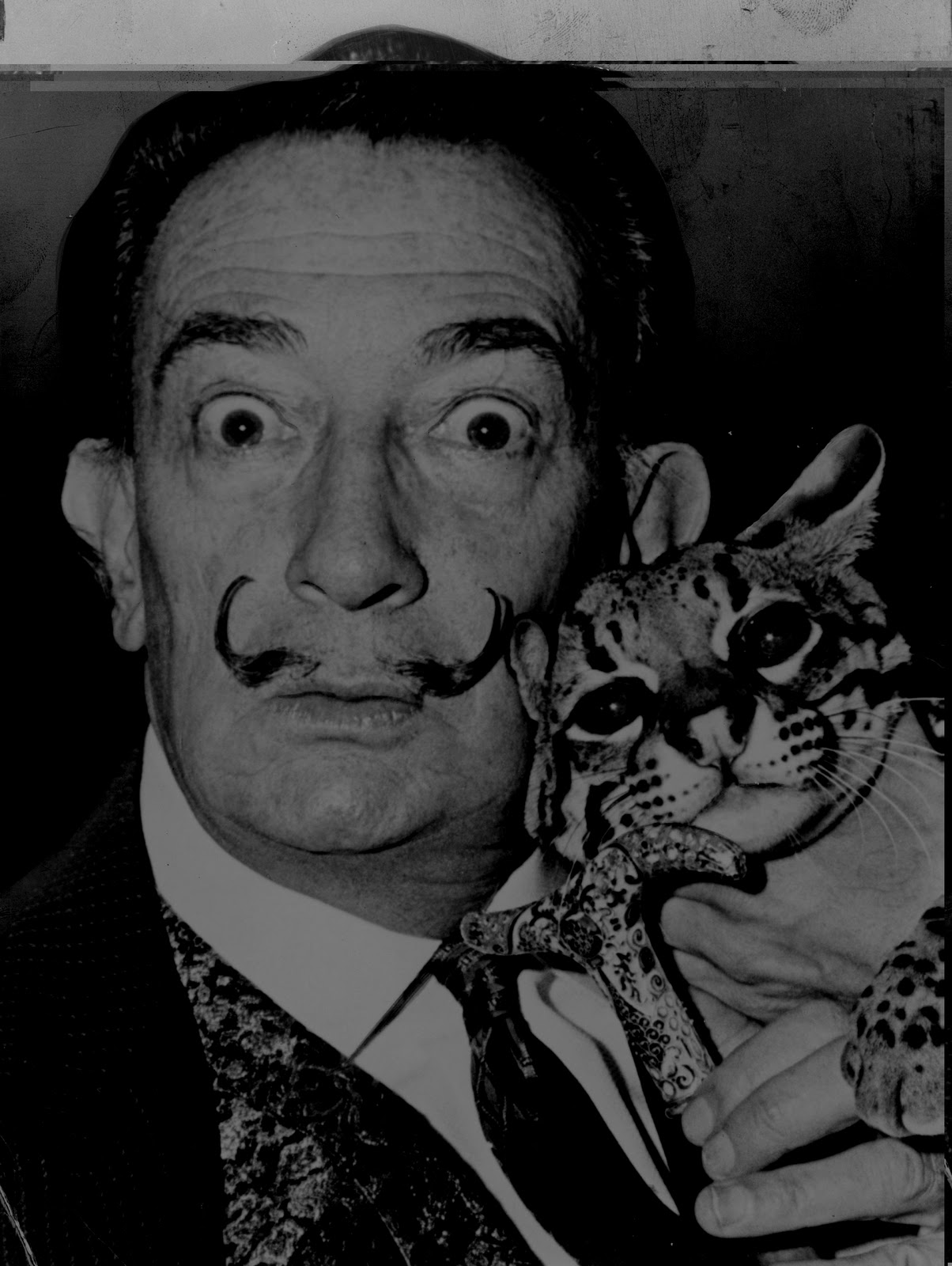 surrealism salvador dali essay In this essay i will explain the differences and similarities between the two art and literary movements salvador dali, helped put out surrealism on the.