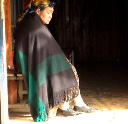 Mujer Mapucheºº