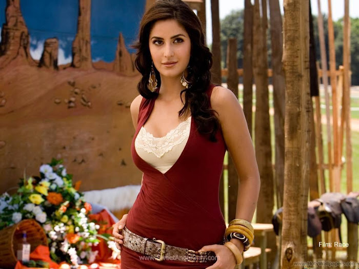Katrina Kaif Hot HD Wallpaper- 08