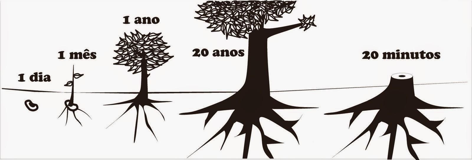 Preservação do meio ambiente Tiago F. Moralles -  Poesia Concreta
