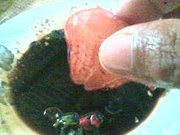 Jambu Air Cicah Kicap
