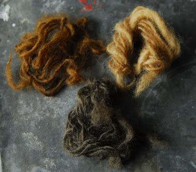 Sage Colours