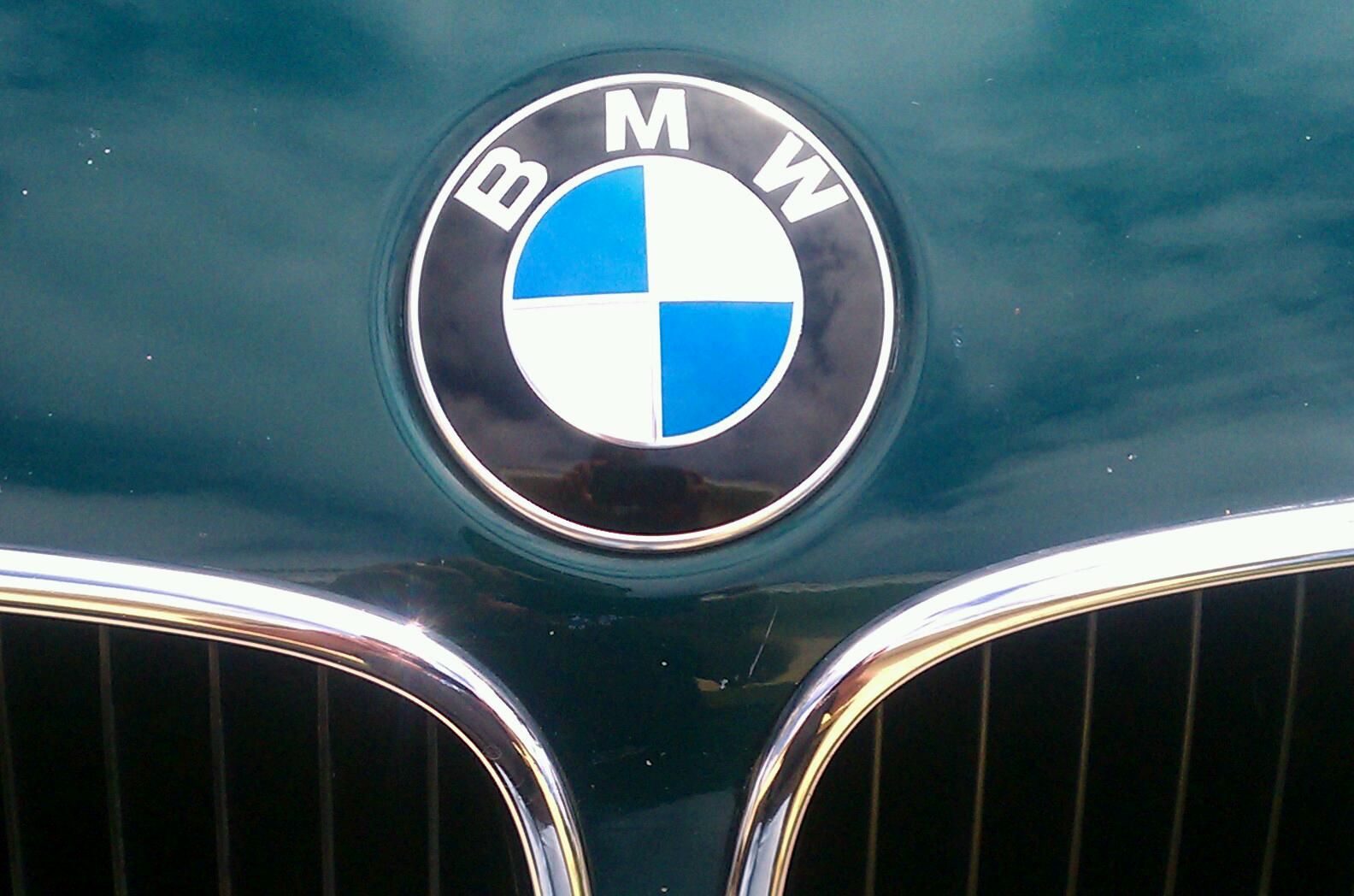 My Perfect 1996 Bmw Z3 Paint Chips And Dip