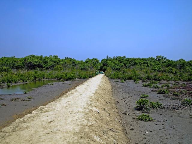Henry Island