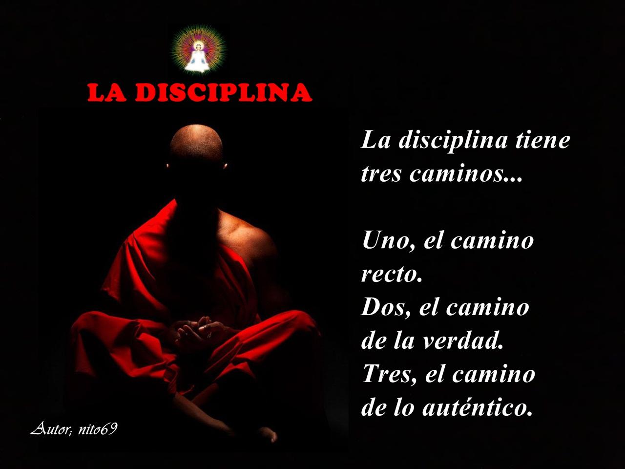 """LA DISCIPLINA """" La disciplina, te lleva a la entereza del ser, la que no se doblega ante nada..."""
