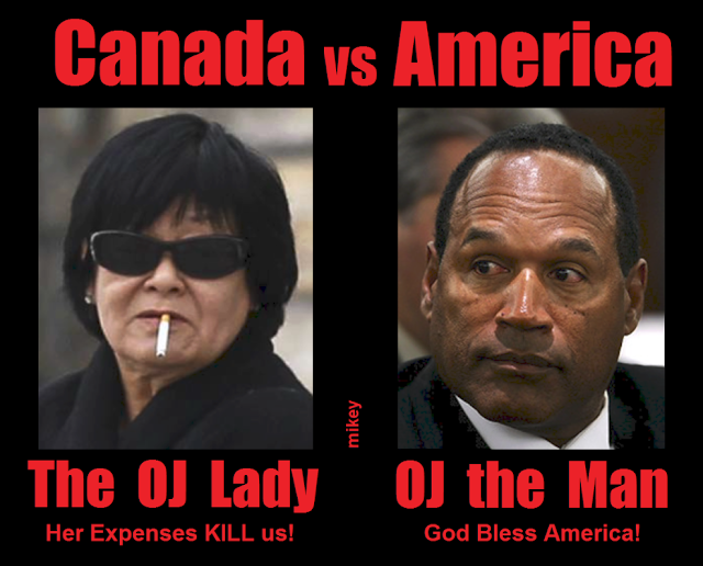 canadian vs american constitution Canada has a parliamentary system of government but its present constitution  drew heavily on the american federal experience canadians.