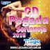 BAIXAR – CD Pegada Sertaneja 2016 – DJ Tiago Albuquerque