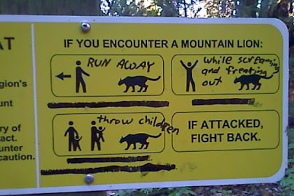 Hiking Meme Funny