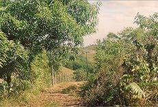 Boca da Mata - Uma Das Partes Da Zona Rural De Candeias