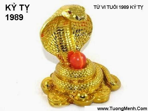 TU VI TUOI TY 1989