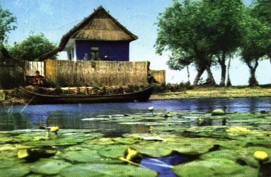 Donaudeltaet Romania