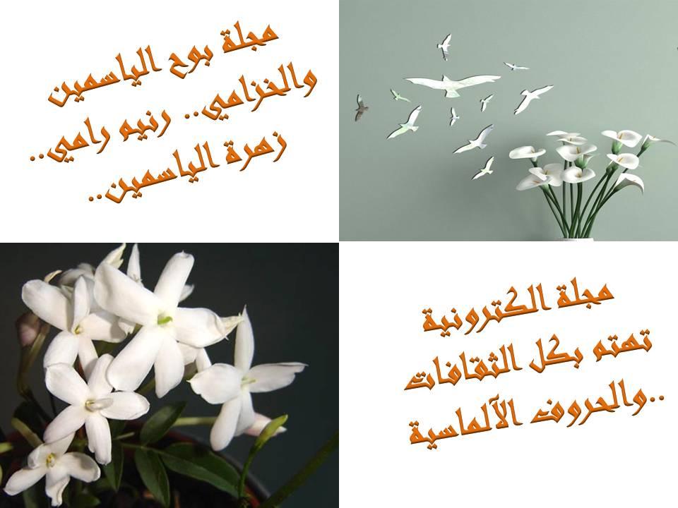 مجلة  زهرة الياسمين والخزامي