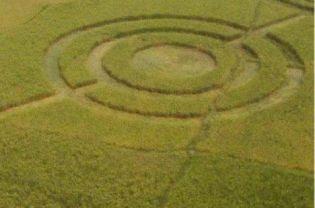 crop circle cikarang bekasi