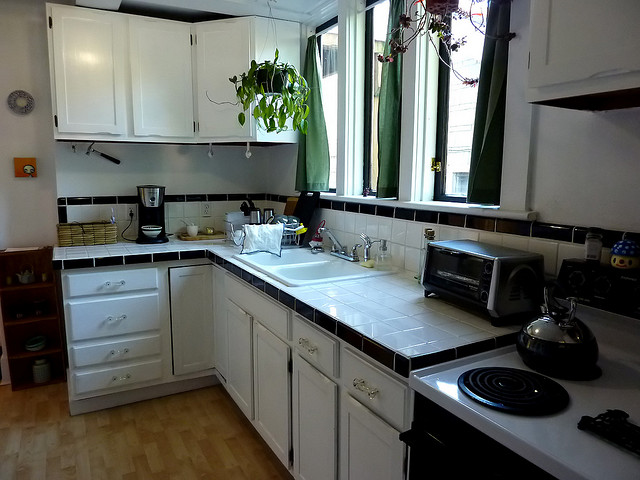 Green Kitchen with Energy Efficient Accessories