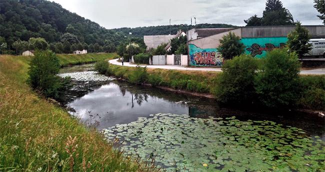 Le canal sur la voie verte à Périgueux encombré par les nénuphar et les détritus