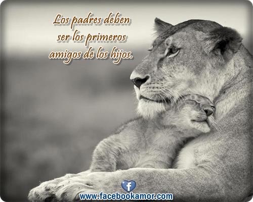 Frases De Hijos Para Padres