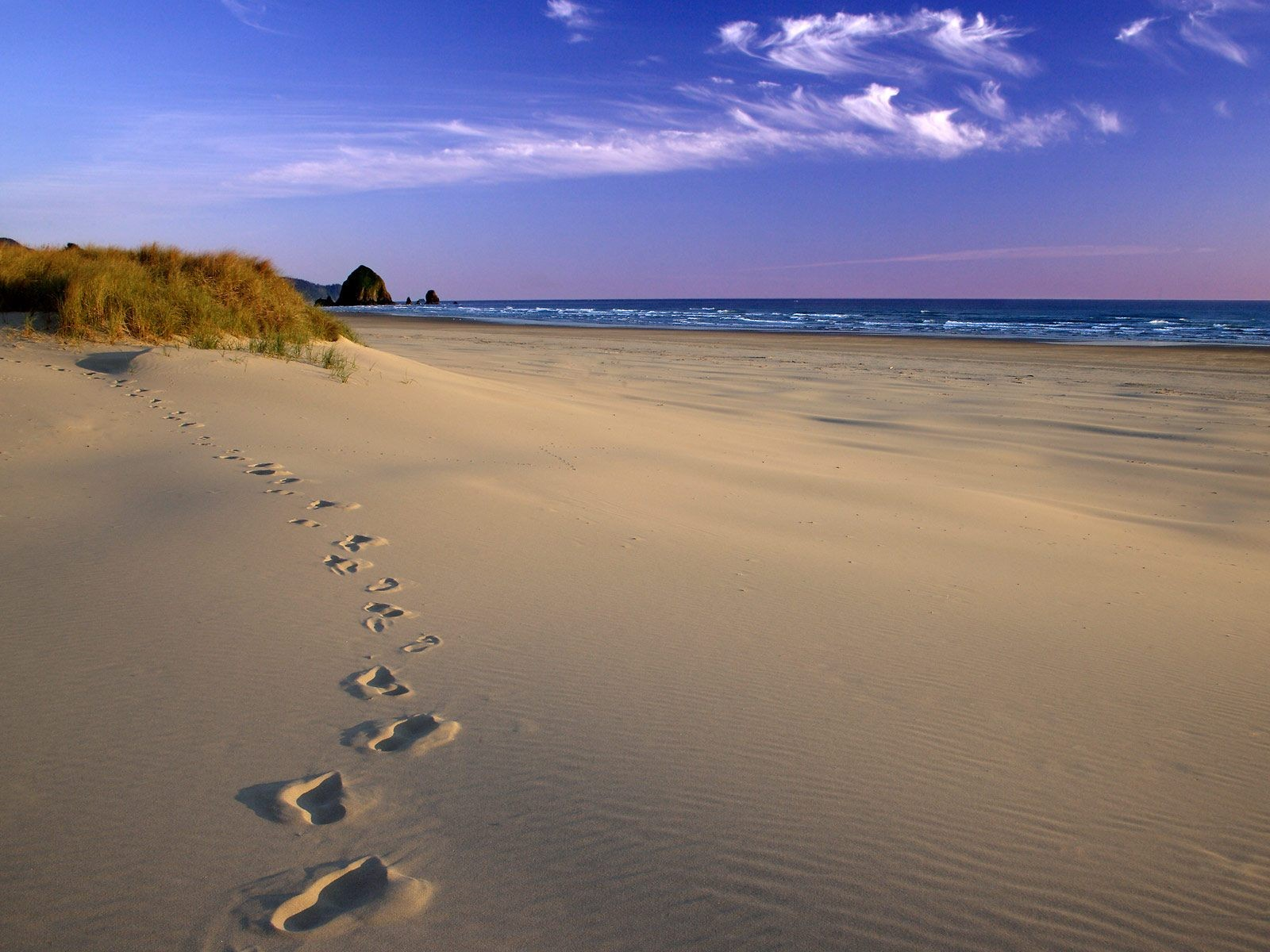 http://3.bp.blogspot.com/-c5p4tDzymNI/Tbb6hsv3C4I/AAAAAAAAADU/YoHtk0VpOpU/s1600/footsteps_on_beach_desktop_wallpaper_84810.jpg