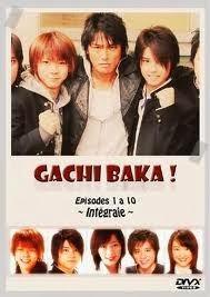 Gachi baka! capitulos